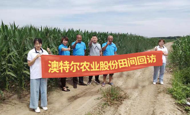 五常水稻合作市效果展示